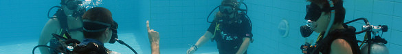 PADI open water level scuba diving courses khao lak thailand